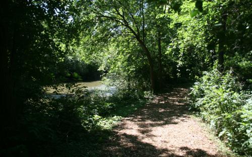Salt Creek Greenway Trail Elmhurst Park District