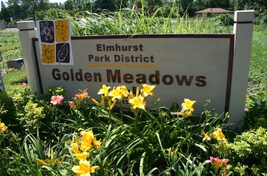 Golden Meadows Park