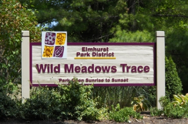 Wild Meadows Trace